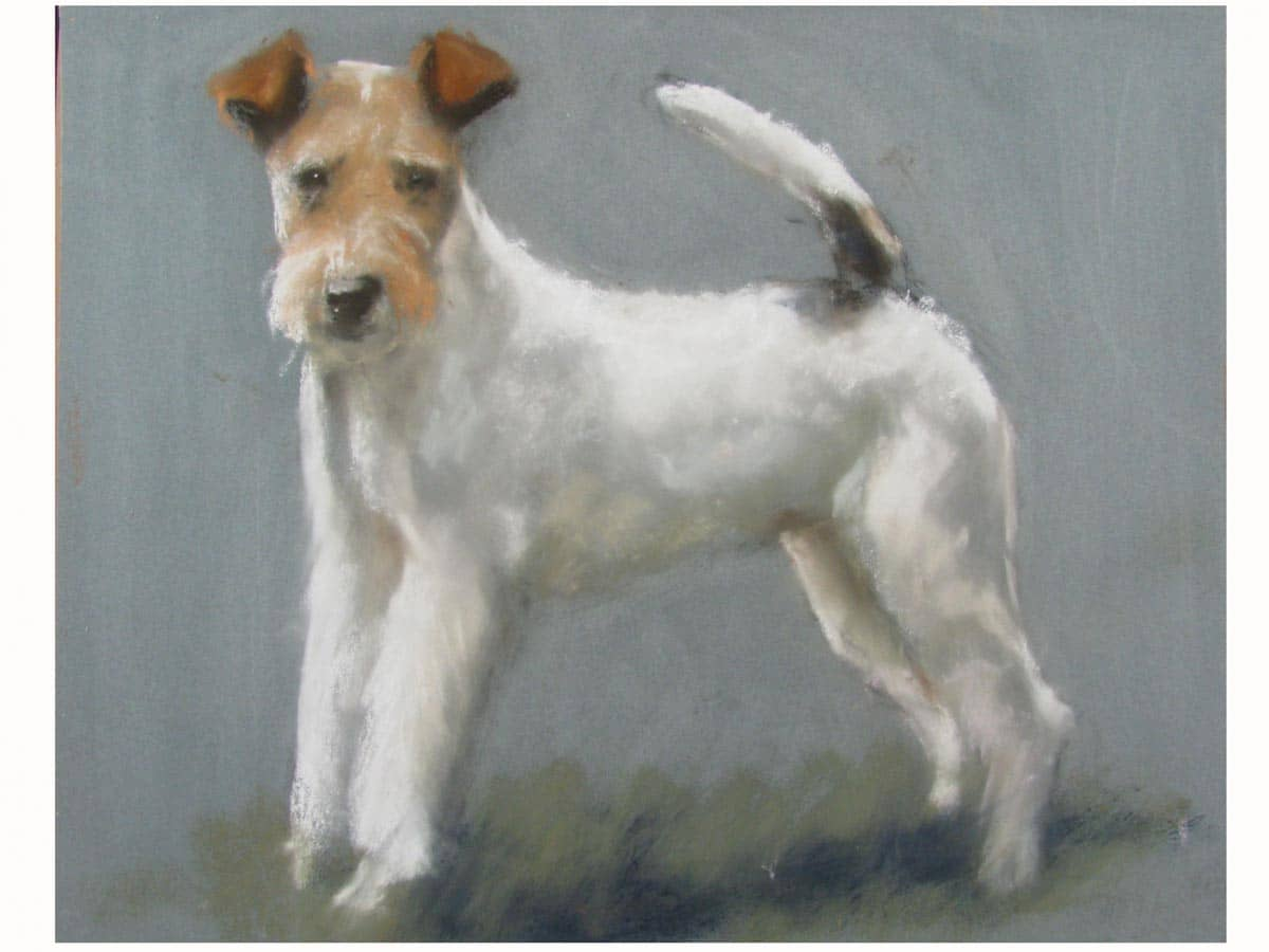 A Wire Fox Terrier Portrait - Ghilli Antiques in Milano