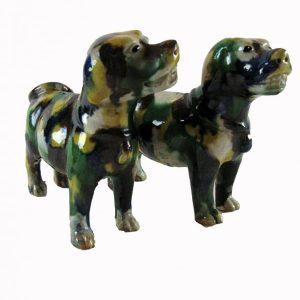 coppia-cani-policromi-3854