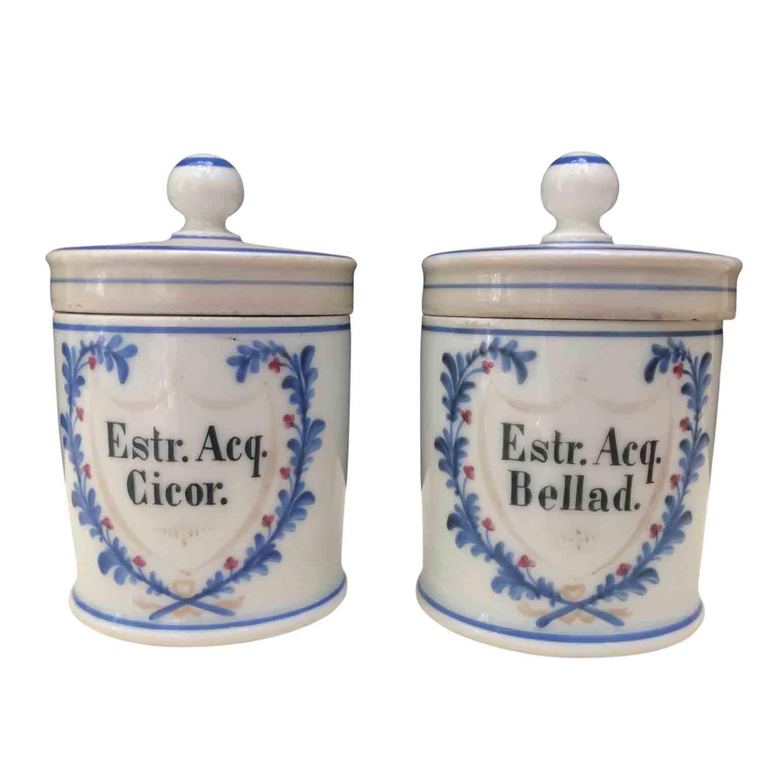 Coppia di vasi da farmacia del 1800