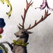 A. Jacobs, Stemma della Famiglia Salmouth, 1766-69 c