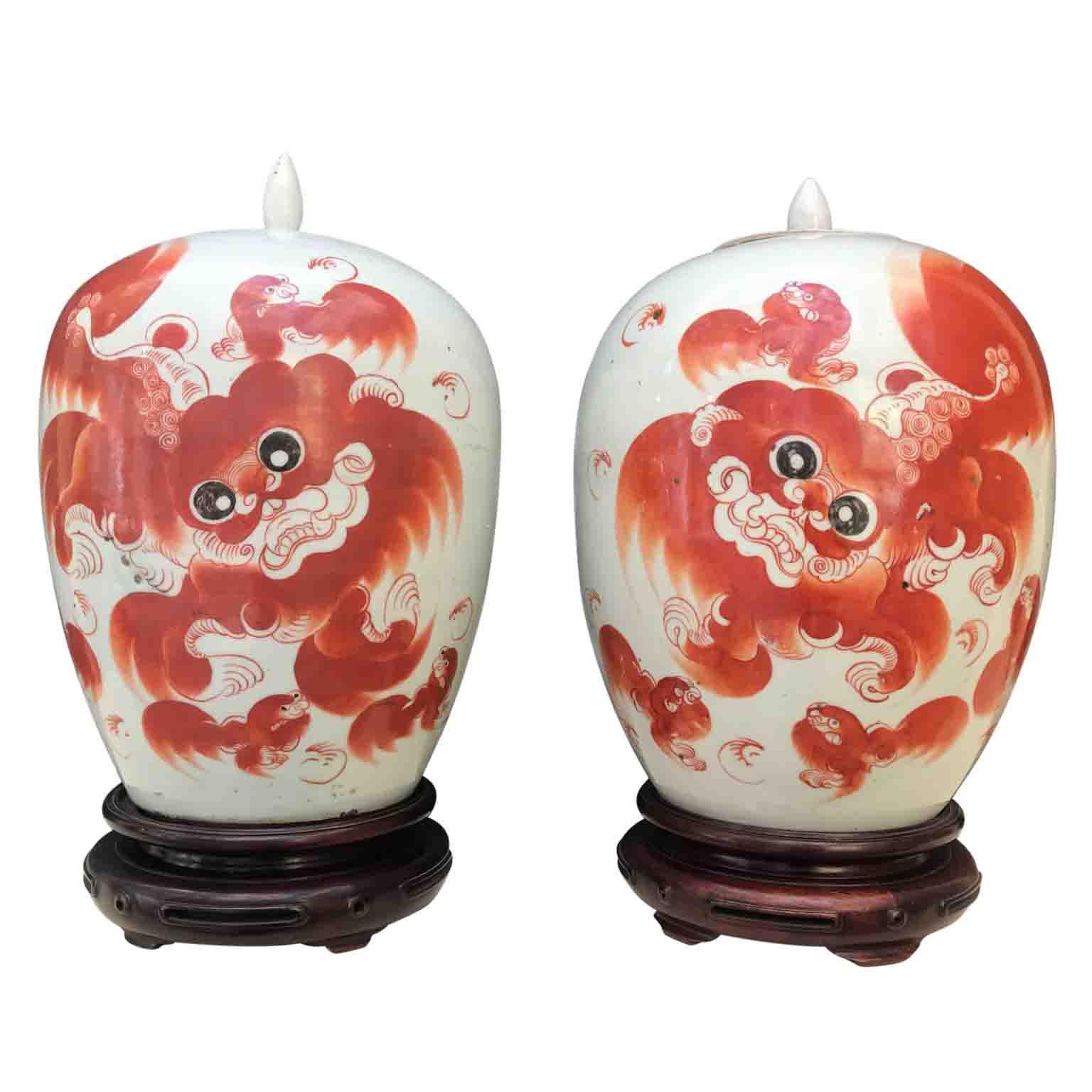 Coppia di Vasi Cinesi Antichi in Porcellana
