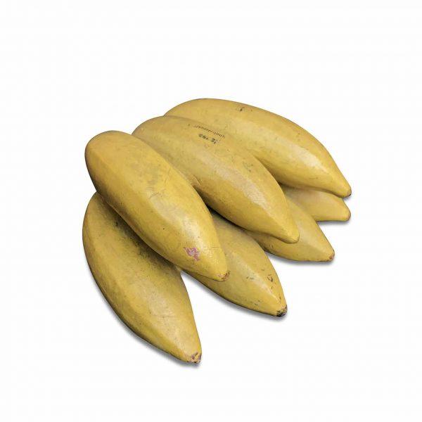 Modello Didattico di Banane