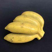 modello-didattico-di-banane-a