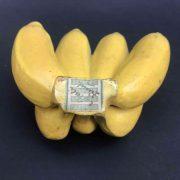 modello-didattico-di-banane-b